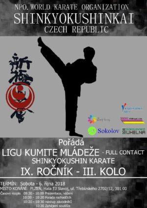 Liga kumite Shinkyokushin Karate 3. kolo 06.10.2018 Plzeň