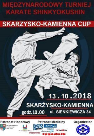 Skarzysko-Kamienna cup