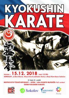 Liga kumite Shinkyokushin karate 4. kolo 15. 12. 2018 Sokolov
